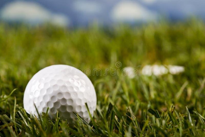 Download Sfera di golf fotografia stock. Immagine di campo, corte - 7318646