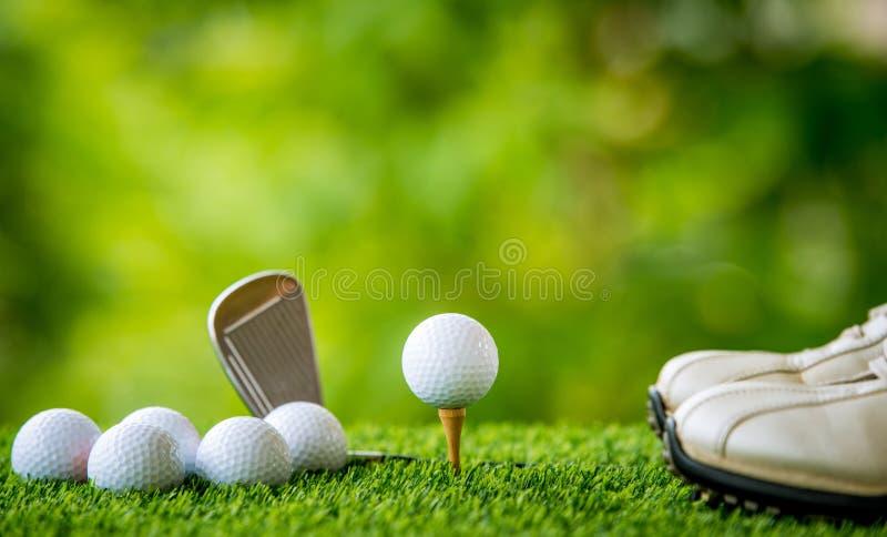 Sfera di golf sul T immagini stock