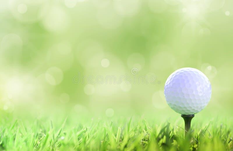 Sfera di golf sul T sopra un verde fotografia stock libera da diritti