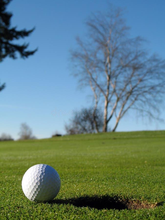 Sfera di golf sul verde immagini stock