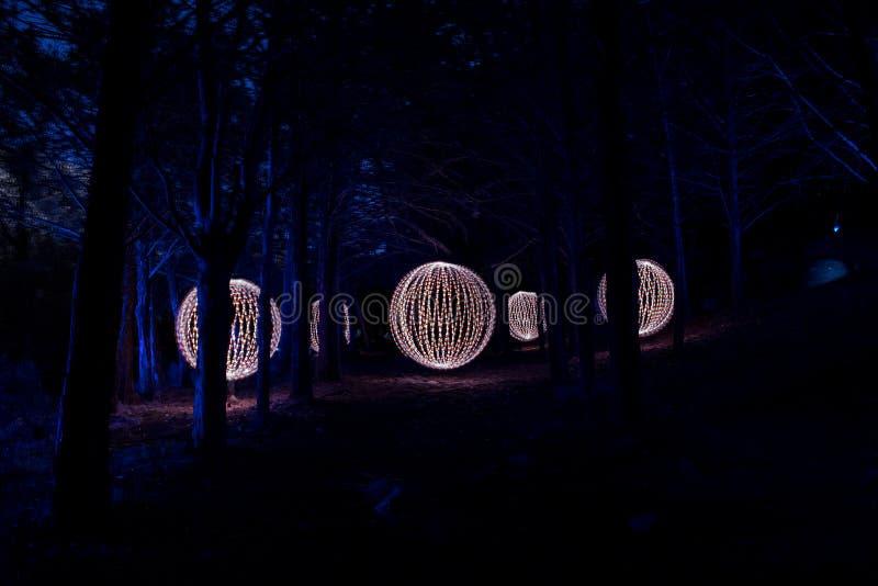 Sfery w ciemnym lesie zdjęcia stock
