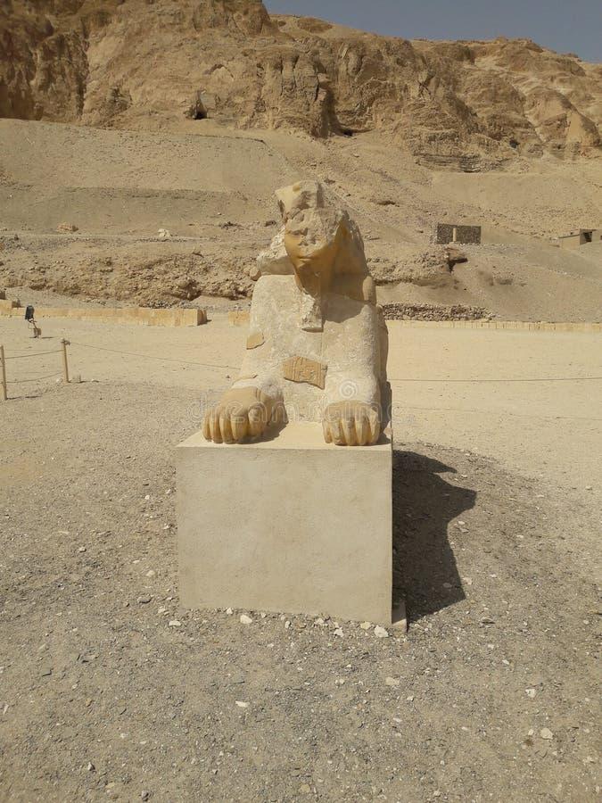 Sfinga Ägyptens Kairo stockfotografie