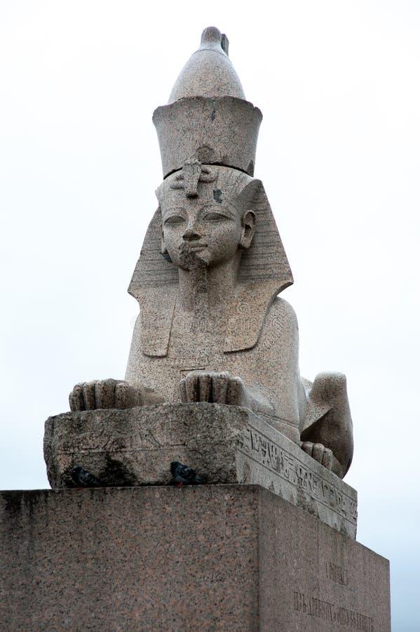 Sfinge dall'Egitto sull'argine del granito di Neva River fotografia stock libera da diritti