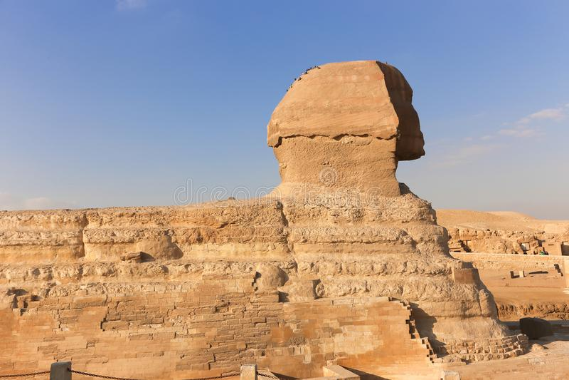 Sfinge a Giza, Egitto fotografia stock