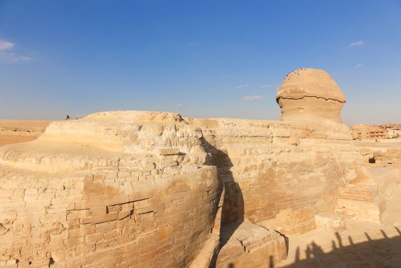 Sfinge a Giza, Egitto fotografia stock libera da diritti