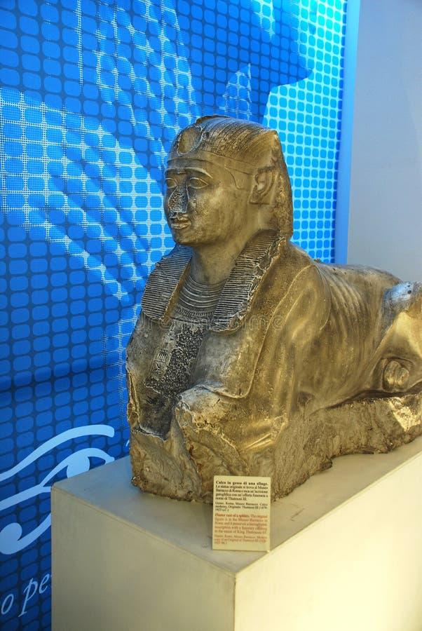 Sfinge in museo egiziano a Torino fotografie stock libere da diritti