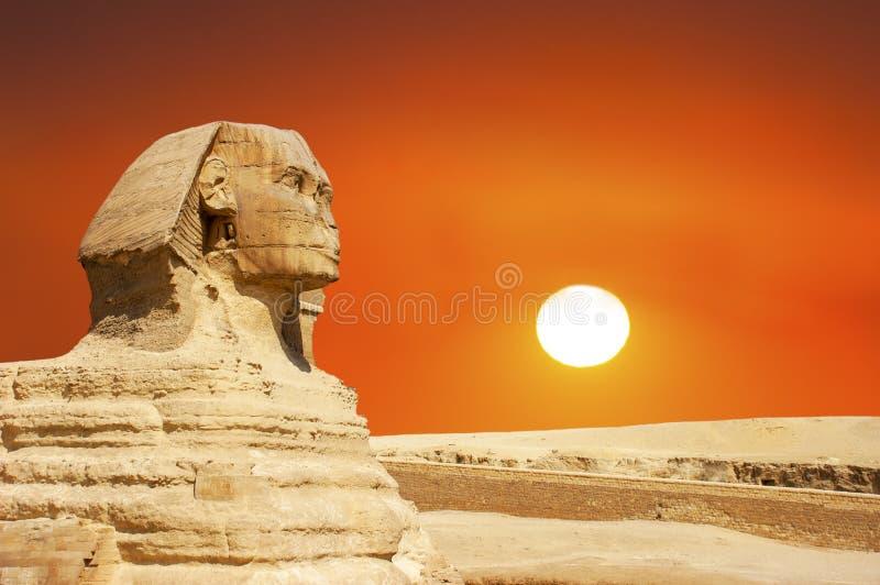 Sfinks, Giza, Kair Egipt podróż, wschód słońca, zmierzch zdjęcie stock