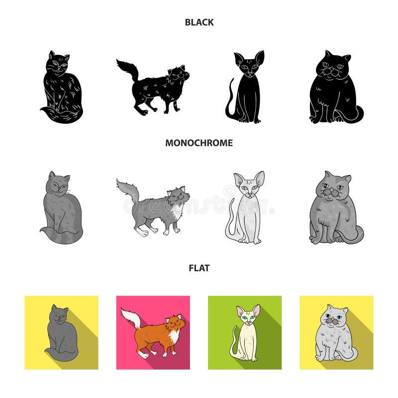 Sfinks, nibelung, norweski lasowy kot i inni gatunki, Kot hoduje ustalone inkasowe ikony w czarnym, płaski, monochrom ilustracja wektor