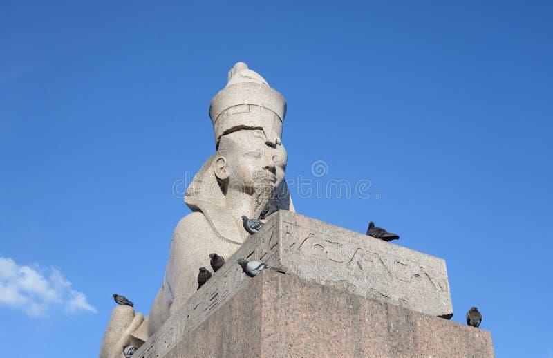 Sfinks w St Petersburg obraz royalty free