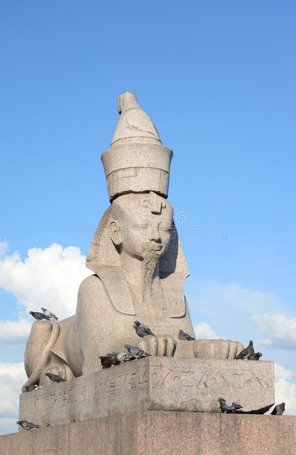 Sfinks w St Petersburg fotografia stock