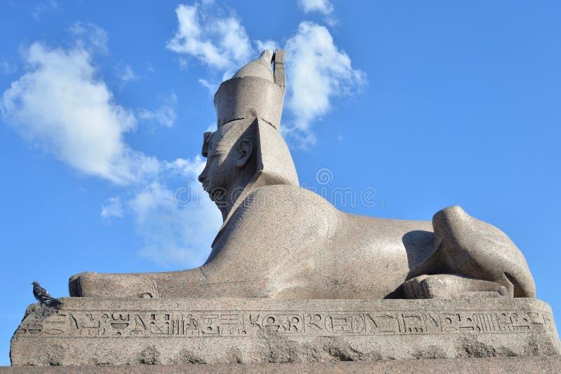Sfinks w St Petersburg obrazy stock