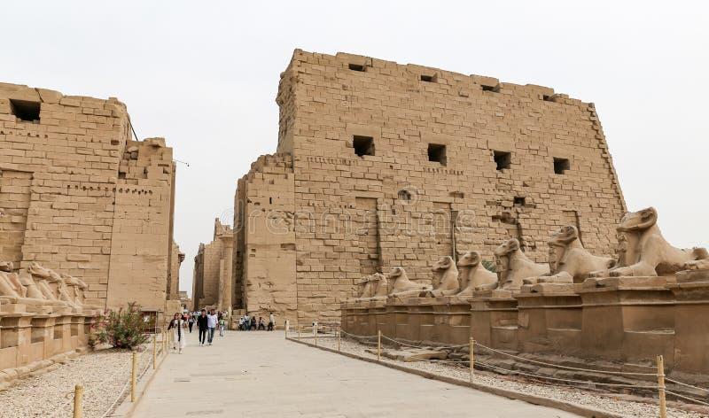 Sfinxen in Karnak-Tempel, Luxor, Egypte royalty-vrije stock fotografie
