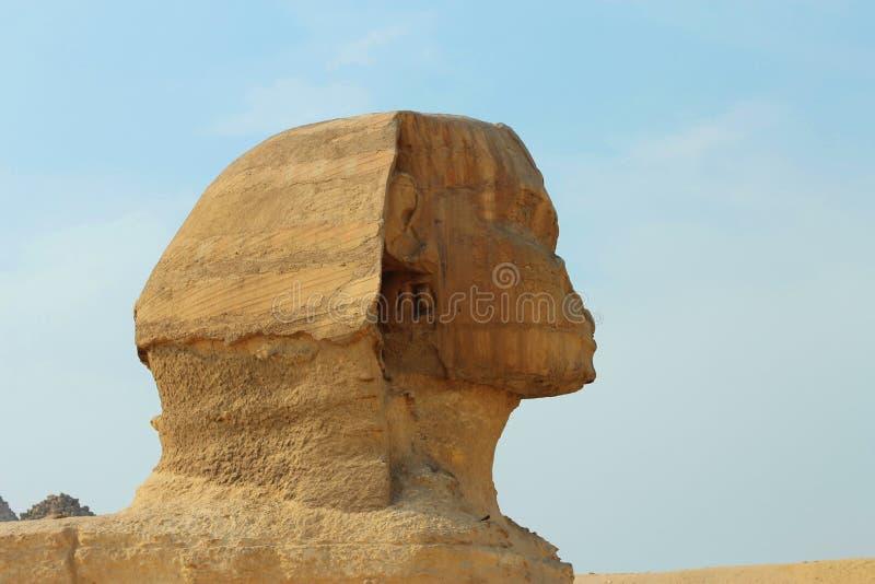 Sfinxstaty i Giza Egypten forntida arkitektur royaltyfri foto