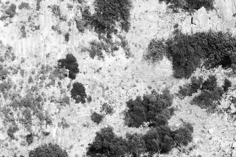 Sfondo naturale in bianco e nero La struttura delle montagne immagini stock libere da diritti