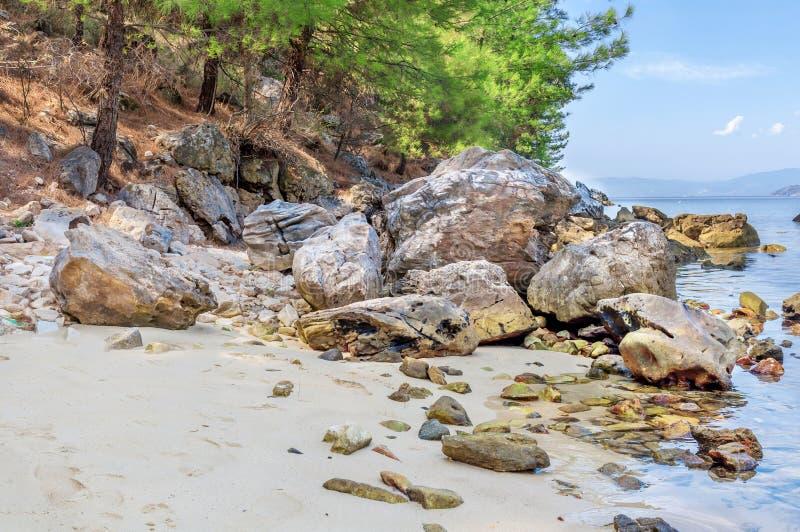 Sfondo naturale con il mare verde, l'albero, le pietre e la foresta fotografia stock libera da diritti