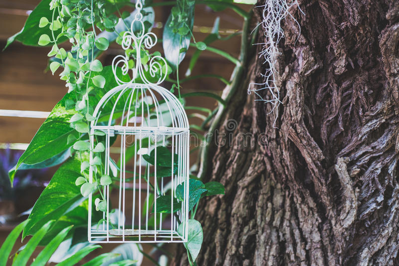 Sfondo naturale del birdcage d'acciaio bianco, per il deco della caffetteria immagini stock libere da diritti