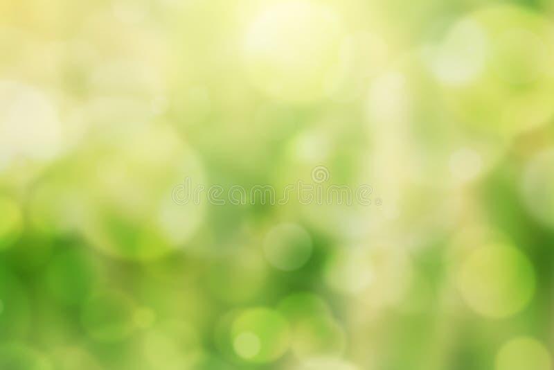 Sfondo naturale del bokeh verde immagini stock
