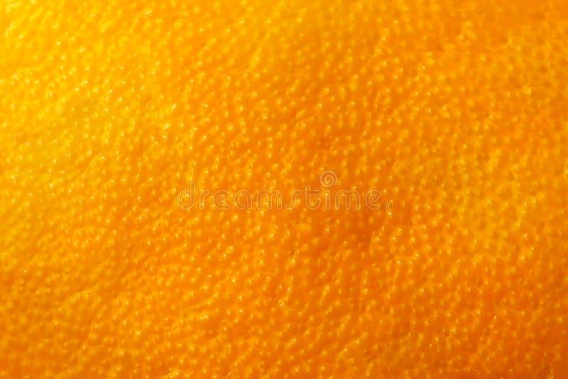 Sfondo naturale della scorza arancio della frutta immagini stock libere da diritti