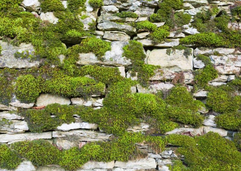 Sfondo a parete di pietre secche Inghilterra immagini stock libere da diritti