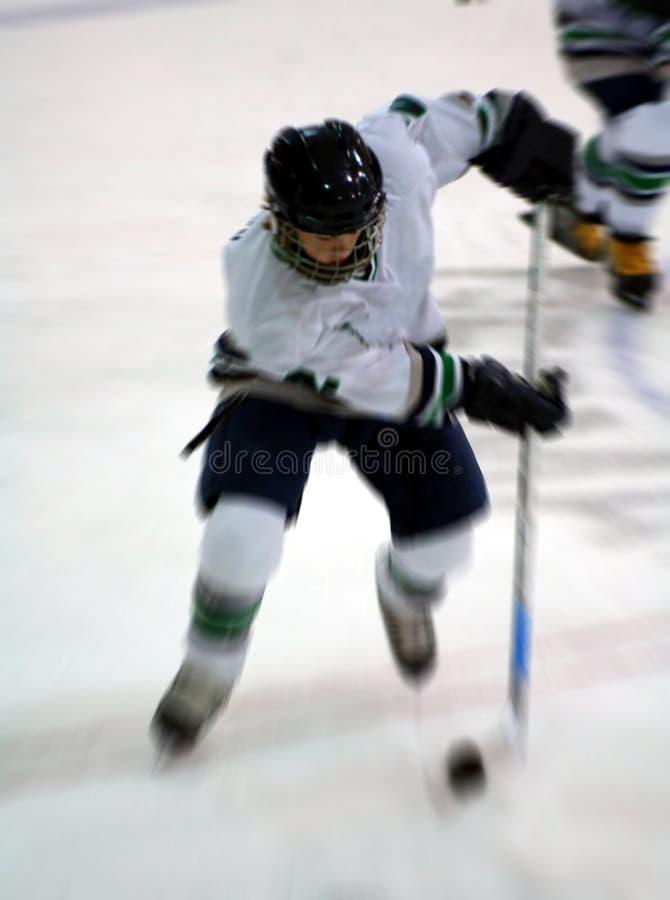 Sfuocatura di azione del giocatore di hokey del ghiaccio fotografia stock libera da diritti