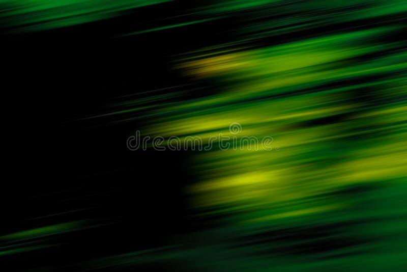 Sfuocatura Di Movimento Della Foresta Fotografia Stock