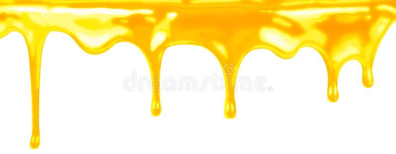 Sgocciolatura del miele sul bianco isolata royalty illustrazione gratis