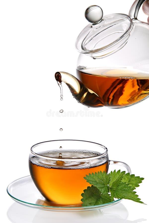 Sgocciolatura del tè nella tazza (percorso di residuo della potatura meccanica incluso) fotografia stock libera da diritti