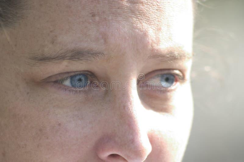 Download Sguardo Degli Occhi Azzurri Immagine Stock - Immagine di stare, nose: 207841
