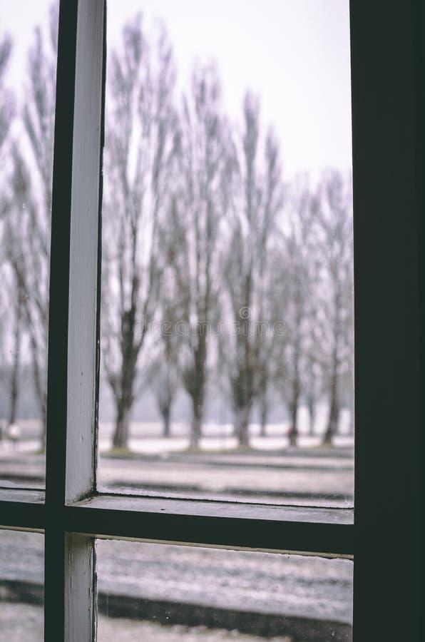 Sguardo fuori dalla finestra immagini stock libere da diritti