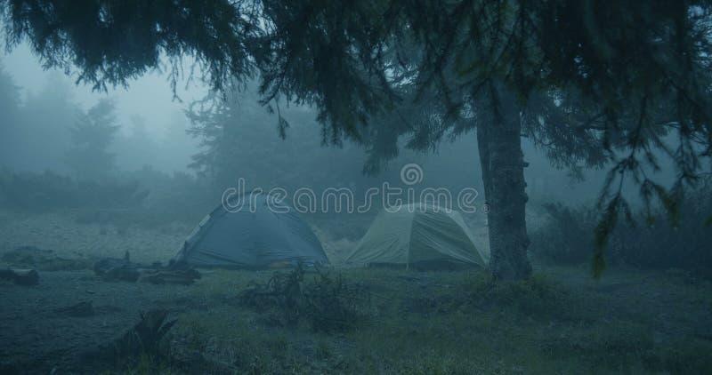 Sguardo nella foresta - due tende sferiche di orrore in un prato inglese erboso in una foresta immagini stock libere da diritti