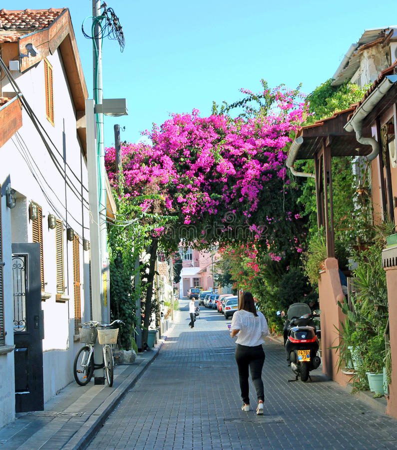 Free Shabazi Street,Tel Aviv Royalty Free Stock Photography - 44918957