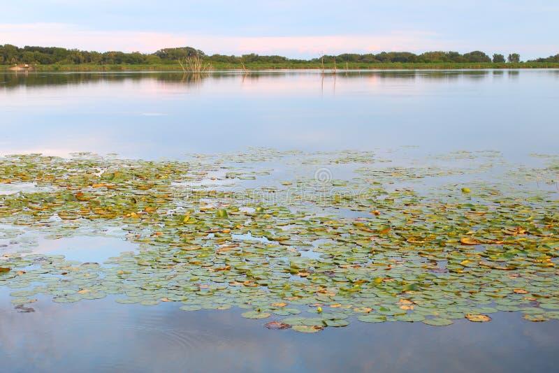 Shabbona See-Landschaft Illinois lizenzfreies stockfoto