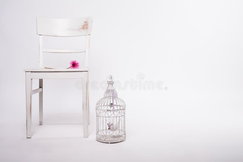 Shabby καρέκλα με το birdcage και το λουλούδι στοκ φωτογραφίες