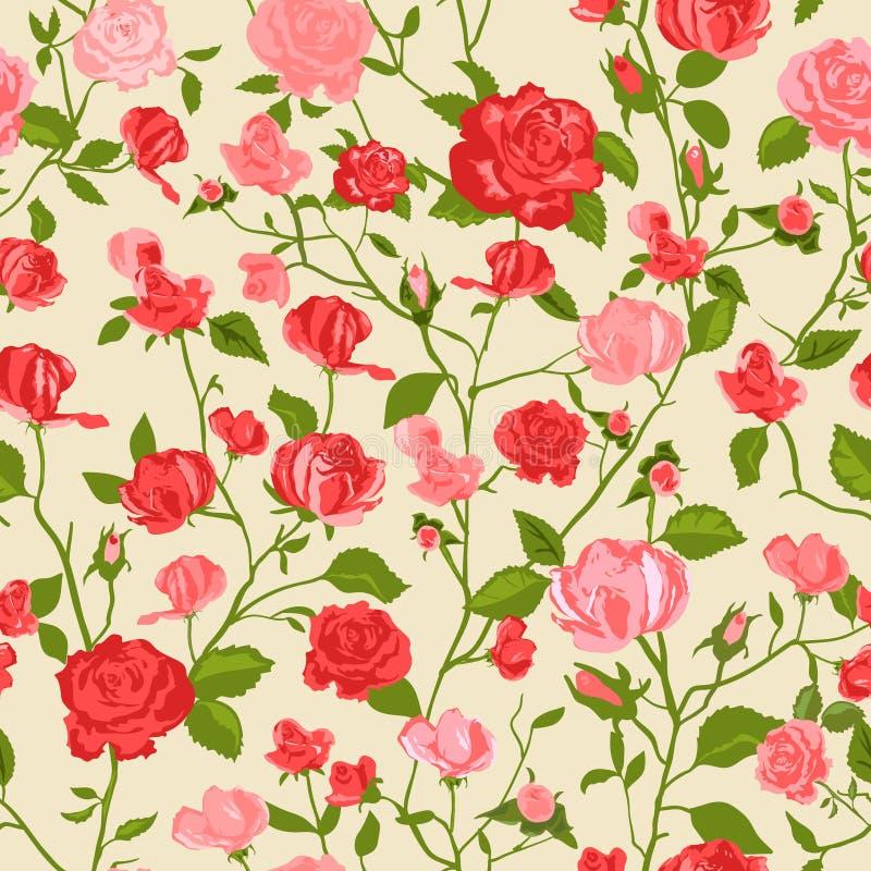 Shabby chic rose background stock illustration
