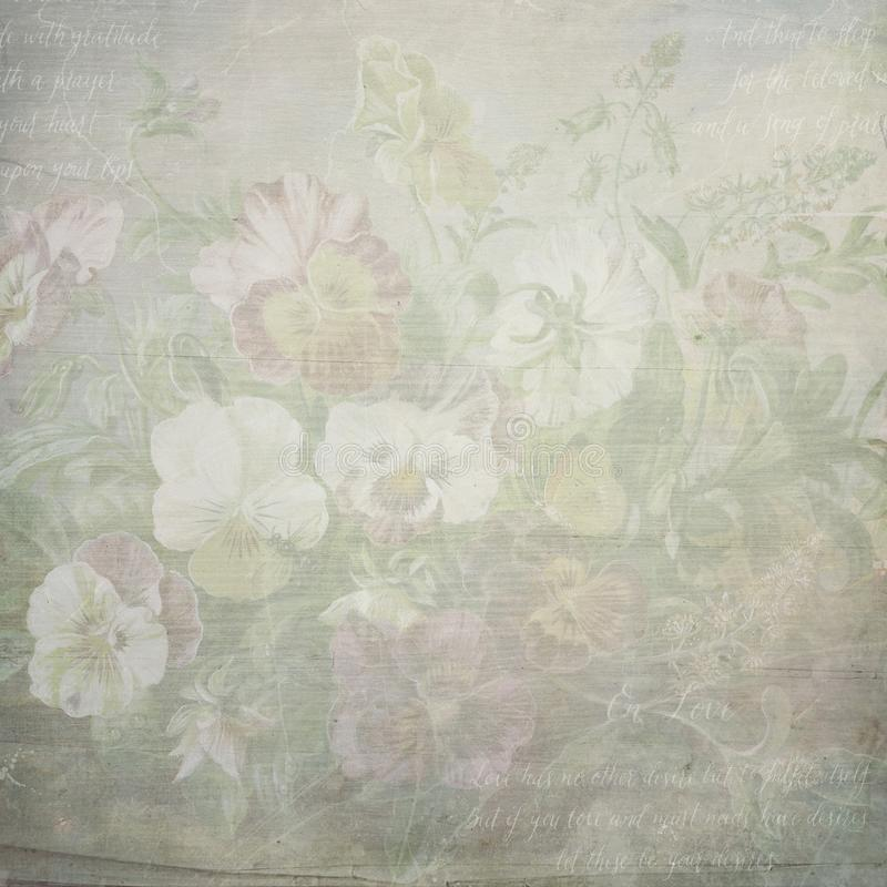 Shabby vintage botanic flowers paper texture. Template for decoration and design stock images