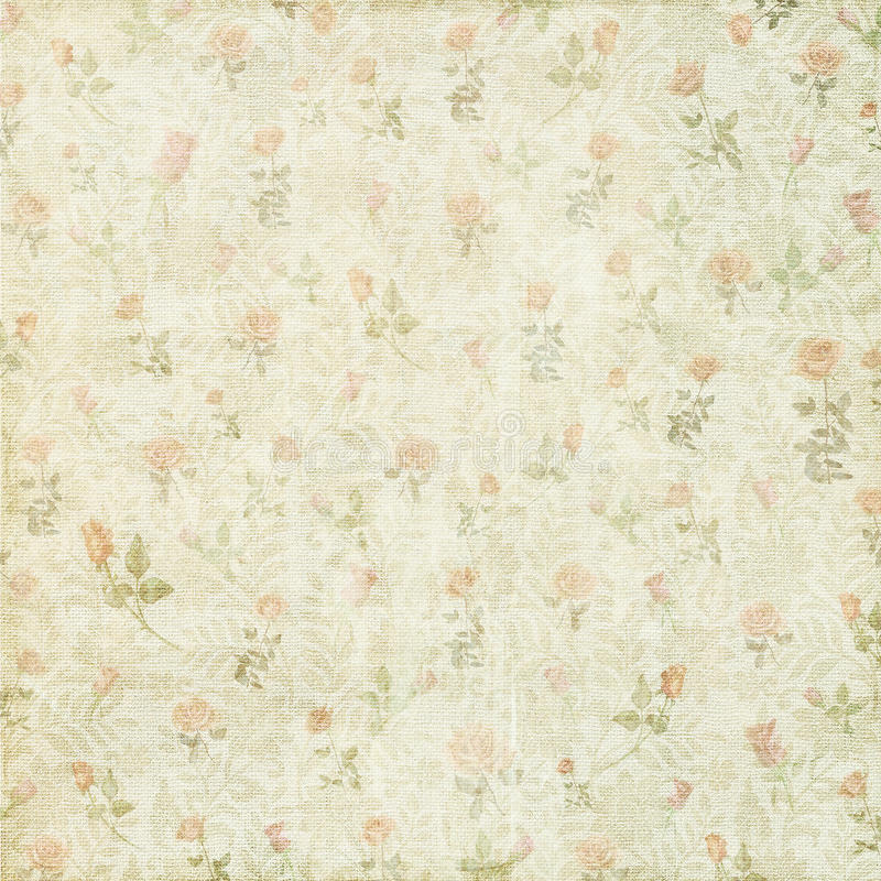 Shabby vintage floral rose background royalty free stock image