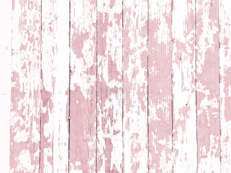 Shabby wood-grain texture white washed with distressed peeling paint. Shabby distressed wood-grain peeling paint texture white washed royalty free stock photos