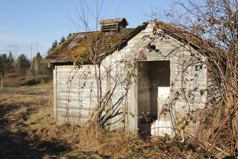 Shack abandonné envahi photo libre de droits