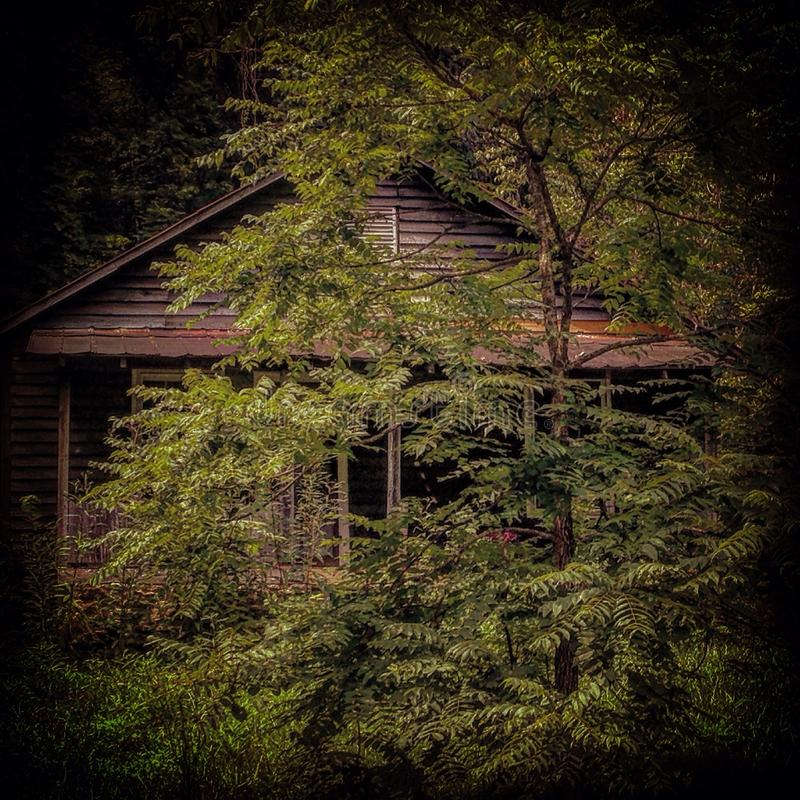 Shack in the Hills royalty free stock photography