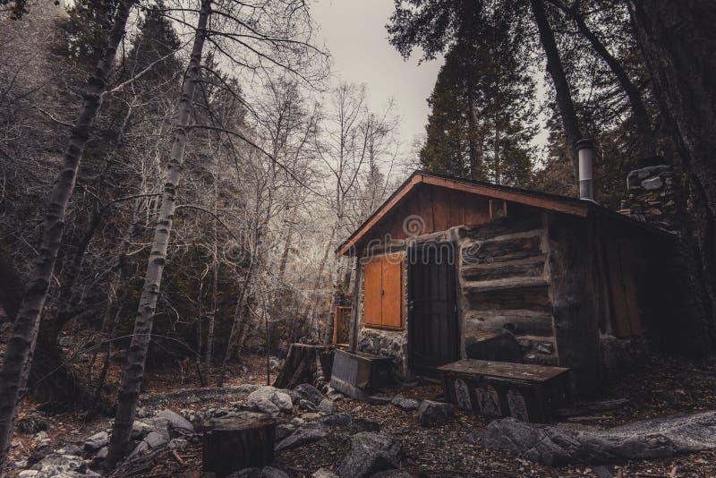 Shack, Log Cabin, Tree, Woodland stock image
