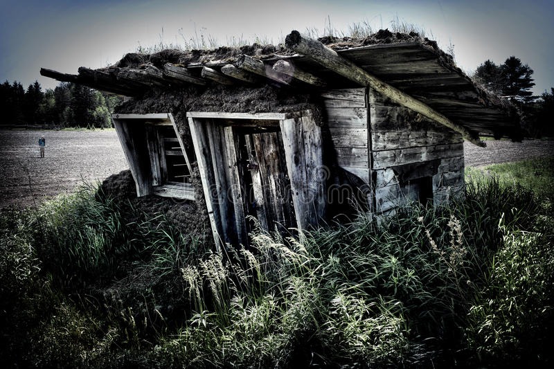 Download Shack with Sod Roof stock photo. Image of shack, door - 25249020