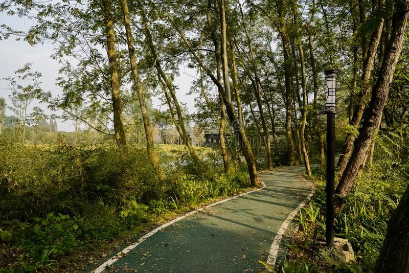 Shaded countryside path in trees along river in sunny winter aft. Shaded countryside path in plants and trees along the river in sunny winter afternoon,Chengdu stock photo