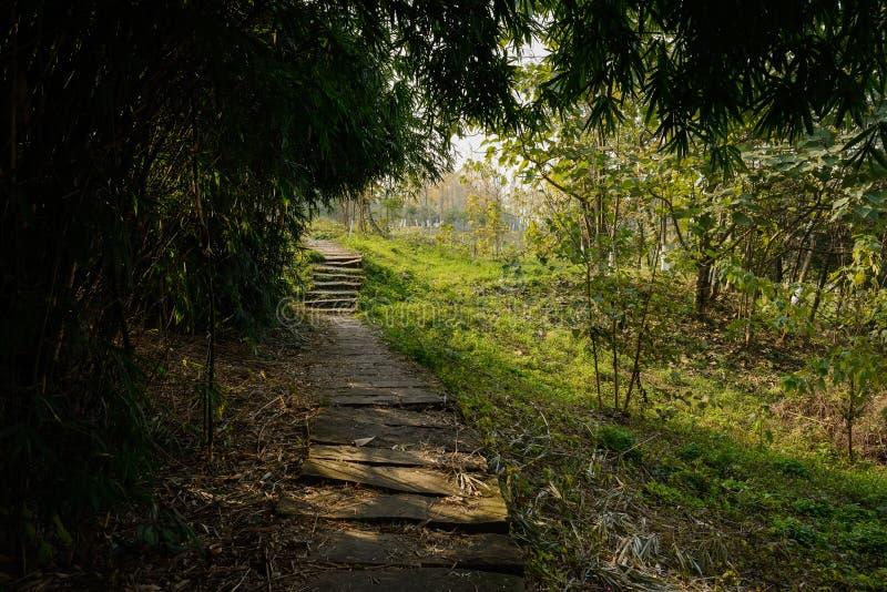 Shaded hillside stone path in sunny winter. Chengdu,China stock images
