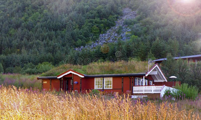 Shaded house Norway Lofoten. An amazing vegetalized roofhouse lost in fields in Lofoten Islands stock images