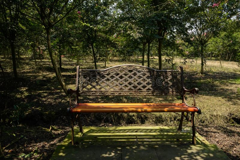 Shaded iron bench with saplings in background on sunny summer da. Shaded iron bench with saplings in the background on sunny summer day,Chengdu,China stock photos