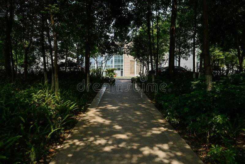 Shaded path on slope to parking yard before modern building in s. Shaded path on the slope to parking yard before a modern building in sunny summer morning royalty free stock photo