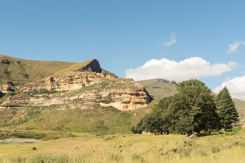 Shaded picnic area at Golden Gate in the Free State stock photography