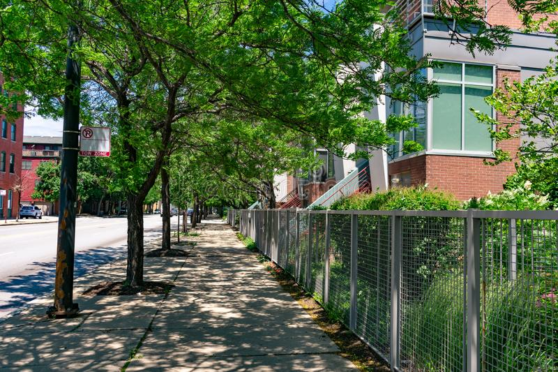 Shaded Sidewalk with Trees and Residential Buildings in the South Loop Neighborhood of Chicago. A shaded sidewalk with trees and modern residential buildings in stock photography