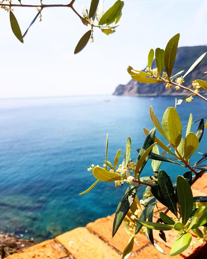 Shades of blue. Feed your soul with colors of the nature. Sea will set you free, if you open your eyes and connect it to your soul. Italy has the most beautiful stock image