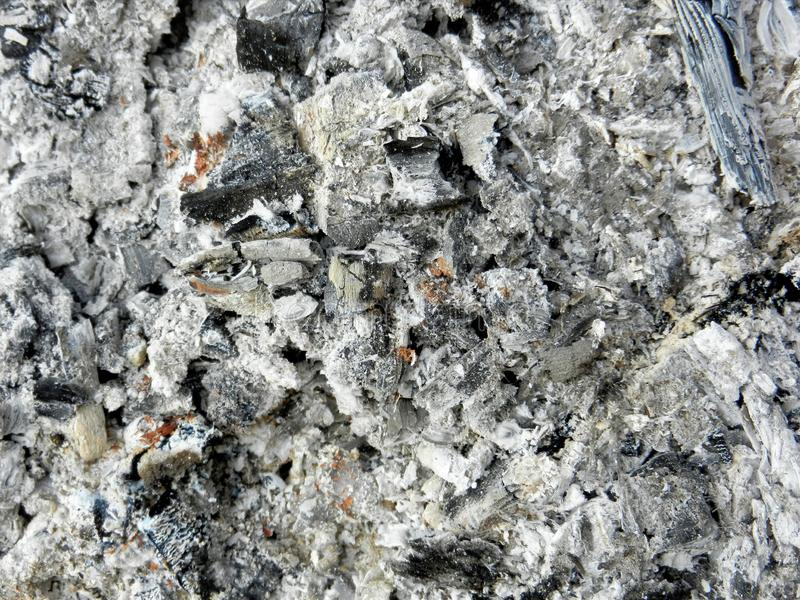 Shades of grey ash background with big black piece of burnt charcoal. Charred firewood texture after wood bonfire went out. Bottom stock photos